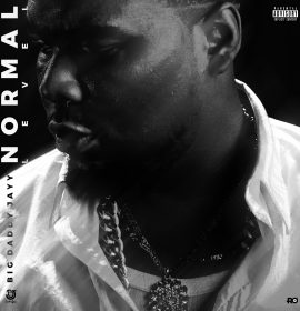 New Music: Big Daddy Jayy – Normal Level