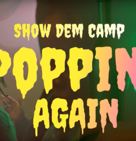 "Show Dem Camp are back with a Palm Wine themed house party in their new music video, ""Popping Again"" ft. Odunsi, BOJ"