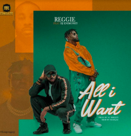 Listen to 'All I want' by Reggie feat. DJ Enimoney